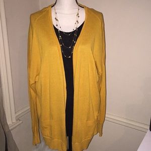 Golden Rod Cardigan Sweater by a.n.a.